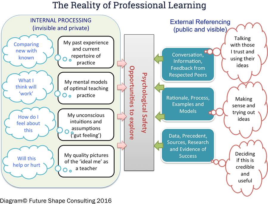 The Reality of Professional Learning